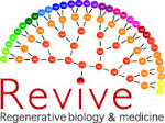 "Labex Revive programme: ""Stem Cells and Regenerative Biology and Medicine"""