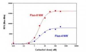 Fluo-8 outperforms Fluo-4 in measuring Intracellular calcium