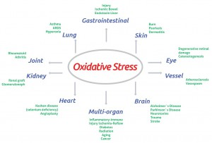 ox stress and diseases