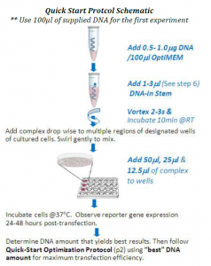 DNA-In Stem quick start
