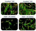 3 solutions for optimal cryopreservation of mammalian cells and tissues
