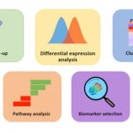 Proteomics Biostats: get the most out of your array data