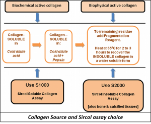 Collagen Source and Sircol assay choice