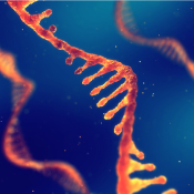 mRNA vaccines are the beginning of more and more mRNA based applications for drug discovery.