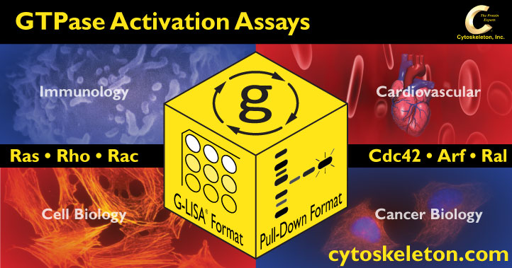 GTPase Activation Assays from Cytoskeleton Inc. tebu-bio