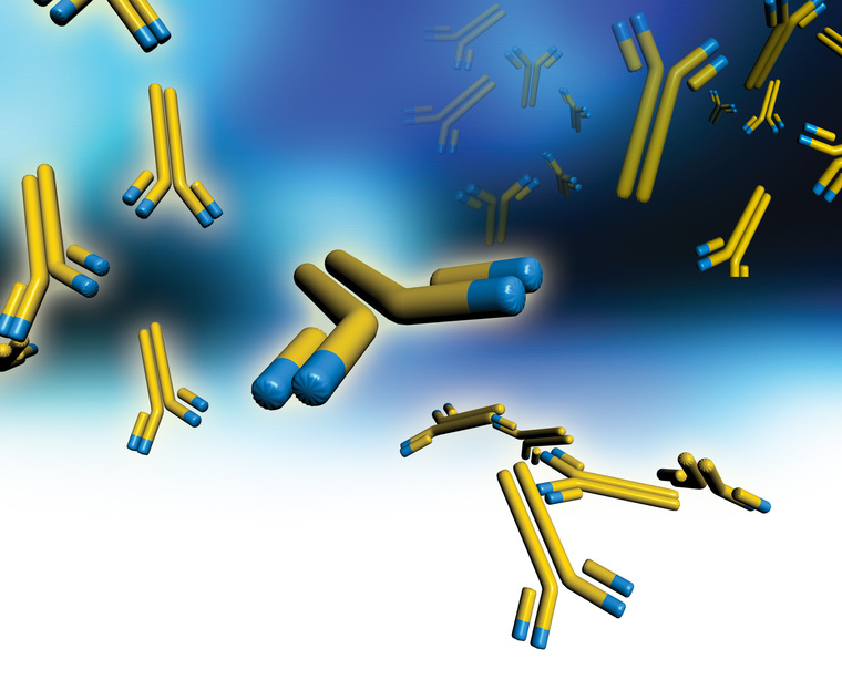 Looking for a specific Antibody? Let tebu-bio find it for you!