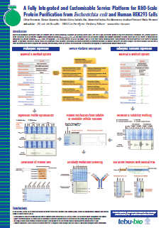 Fully integrated and customisable service platform for R&D scale protein purification from E coli and HEK293