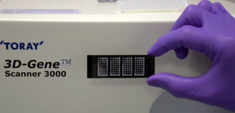 Toray's 3D-Gene Platform at tebu(bio laboratories for miRNA and mRNA Arrays Services